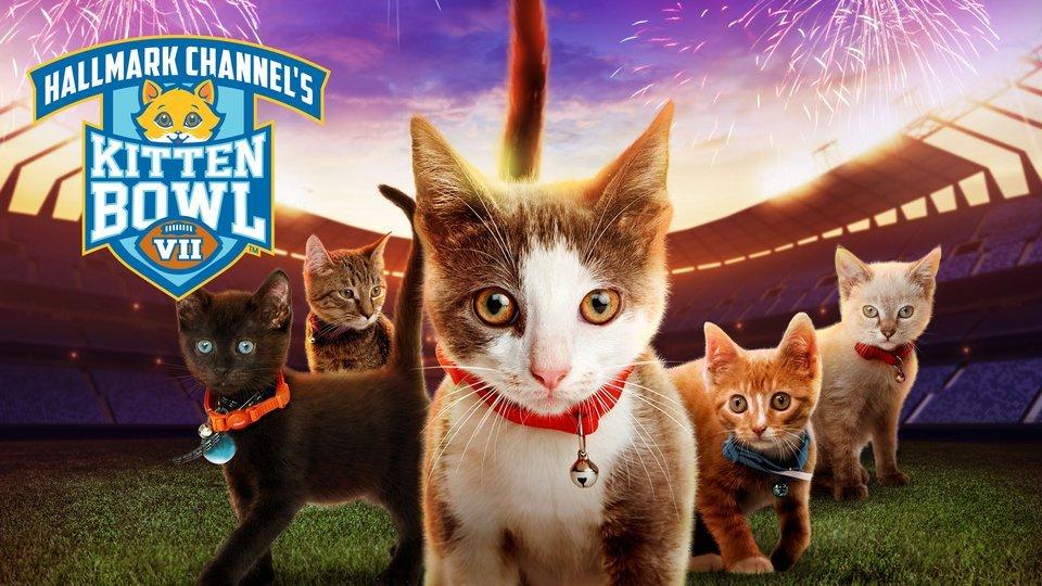 Promo for Hallmark's Kitten Bowl